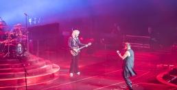Queen + Adam Lambert - Bologna 10-11-2017-11